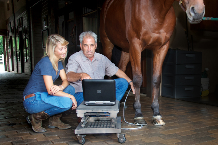 Equine veterinarian using a SonoSite ultrasound machine