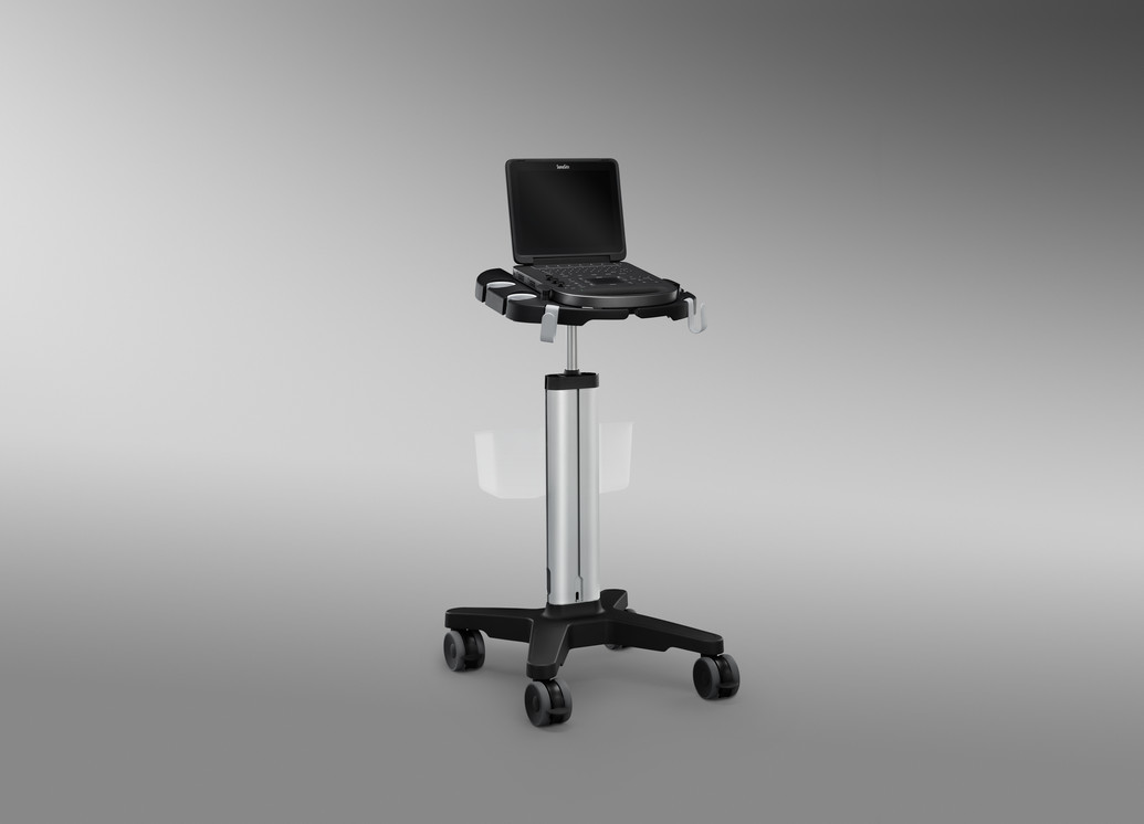 Portable ultrasound system with optional stand, which includes storage basket.