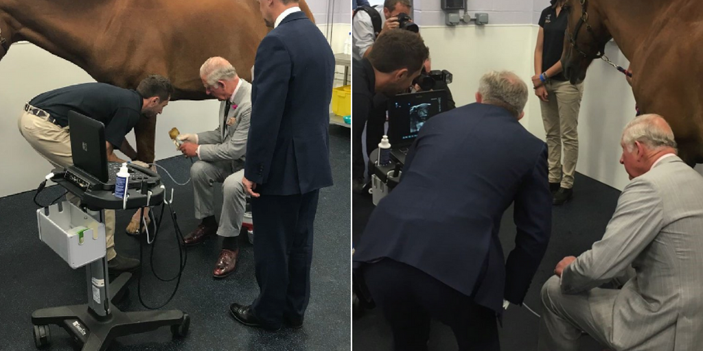Prince Charles using a SonoSite Edge II